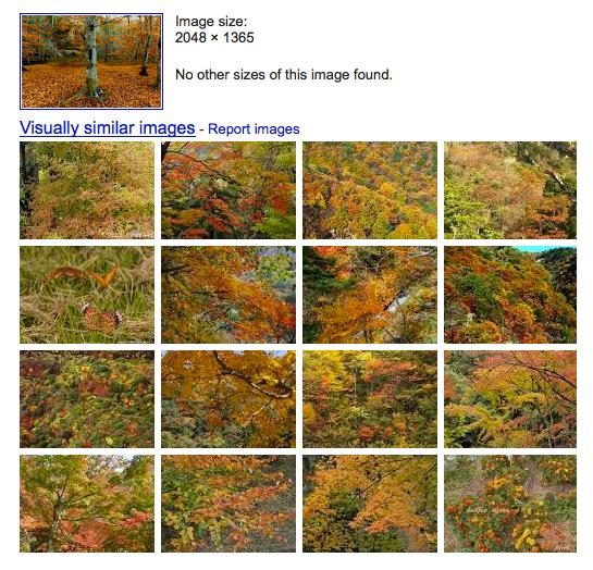 FacebookPhotoAppraiser2   Facebook Photo Appraiser: Find Similar Images To Your Friends Facebook Photos
