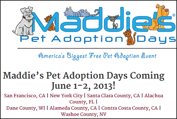 Maddie's Fund - adoption days