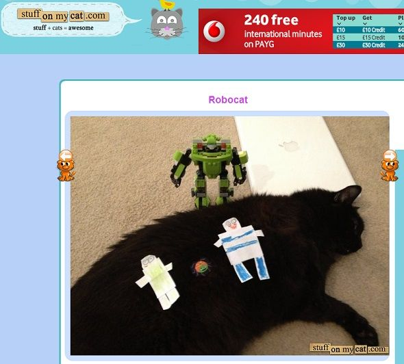 8 Purrfect Cat Websites For Feline Lovers stuff on my cat homepage