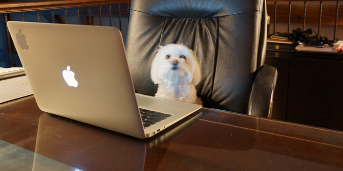dog-at-computer1-670x335.png