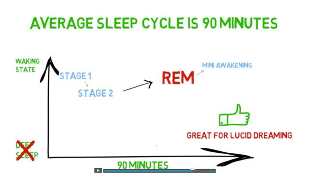 lucid-academy-course-screencap-sleep-stage-rem