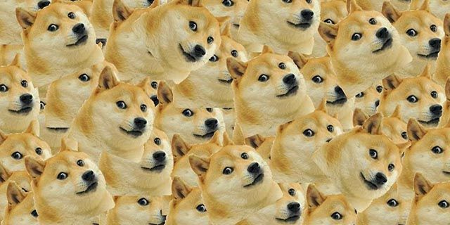 dogecoin-community-users