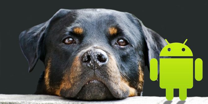 Dog Owners: 5 Android Apps To Help With Your Furry Friend
