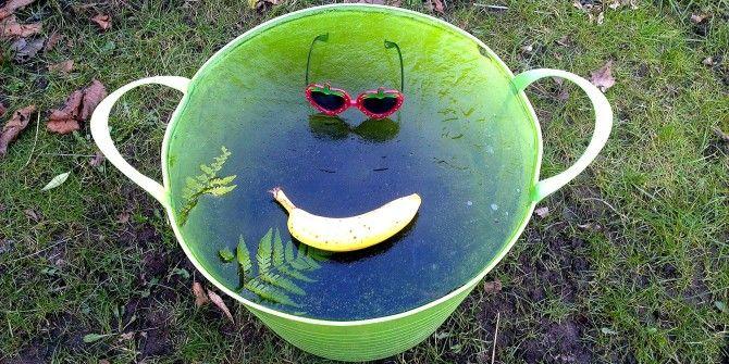 Water Woes: 20 Of The Best Celebrity Ice Bucket Challenge Videos [Weird & Wonderful Web]