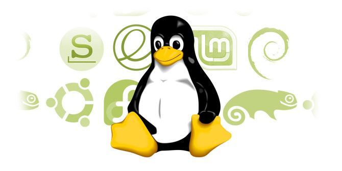 Switching To Linux? Here's How To Choose The Right Distro