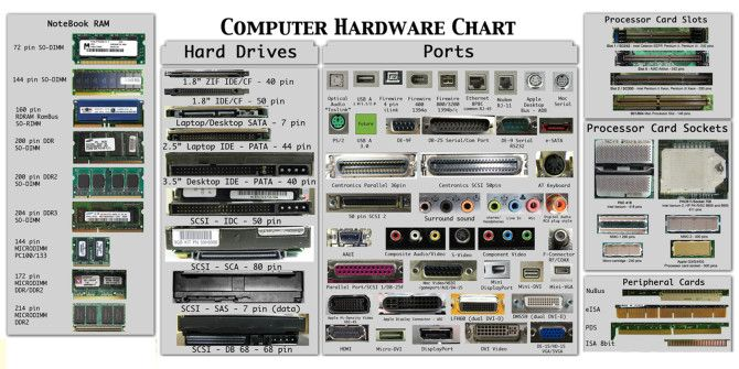 Do You Know Everything  About Computer Hardware?