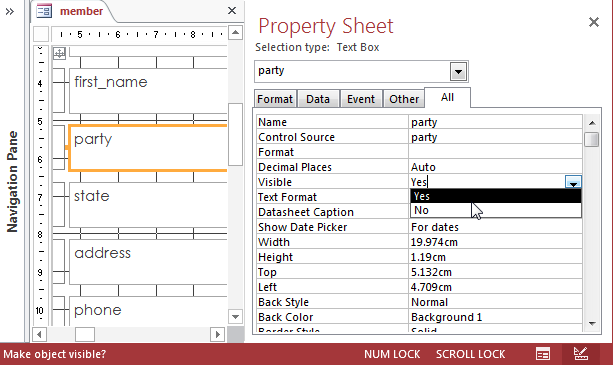 Access 2013 Property Sheet