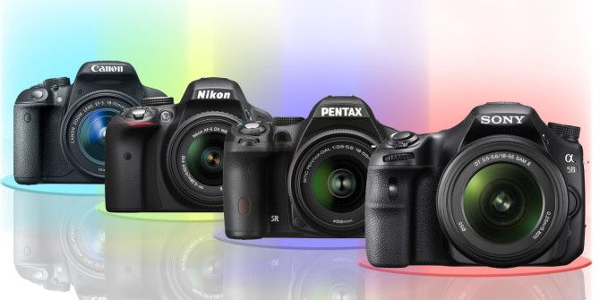 The Best Entry-Level DSLRs For New Photographers