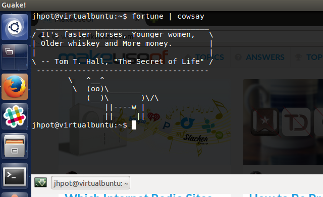 guake-linux-beautiful-terminal