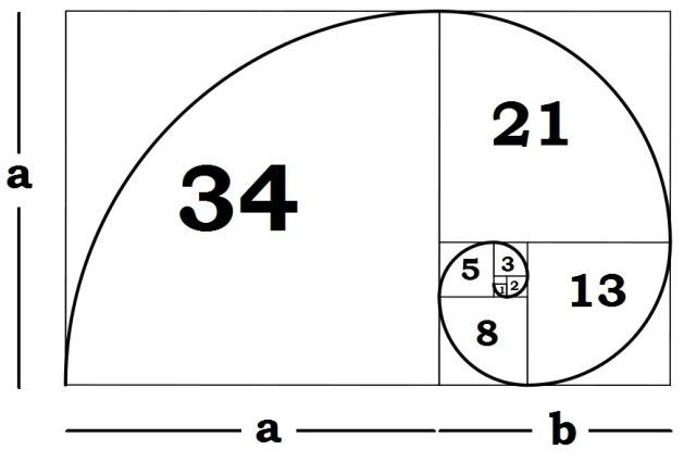 fibonacci-spiral-explanation