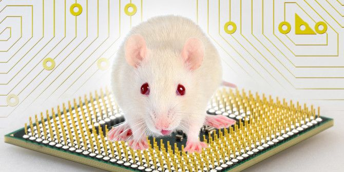 IBM Creates Neural Network Chip as Large as a Mouse Brain