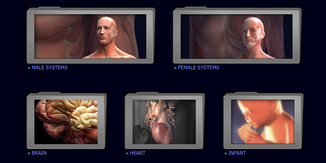 3d-anatomy-models-3dscience