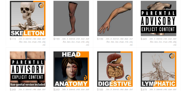 3d-anatomy-models-cgstudio