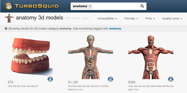 3d-anatomy-models-turbosquid