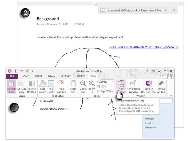 Full View -- Microsoft OneNote