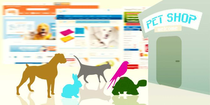 The Best 13 Online Pet Shops for Your Furry Friends