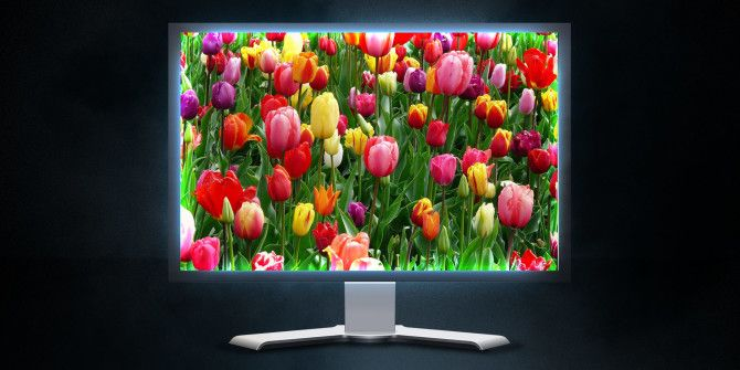 4 Myths About LCD Monitors That Are Outdated and False