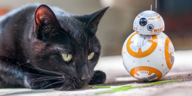 Feline the Force: Sphero Star Wars BB-8 Review and Giveaway