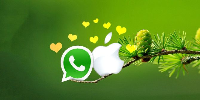 How to Install Whatsapp for Mac OS X: What You Need to Know