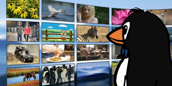 The Current State of Video Streaming Services on Linux