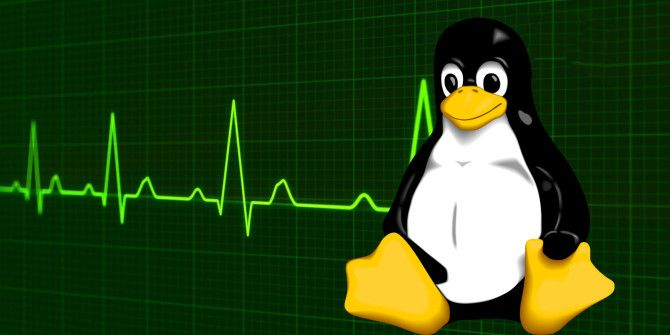 How to Kill Programs and Check System Information in Linux