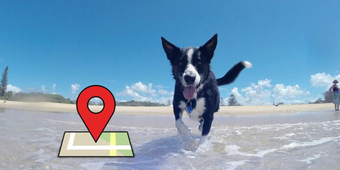 How to Track Your Pets Using iOS or Android