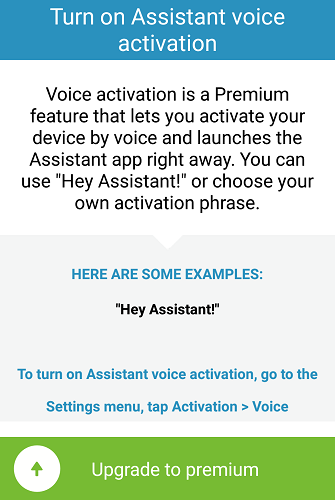 VoiceActivation