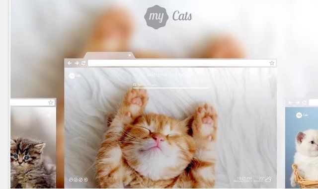 chrome-my-cats-new-tab