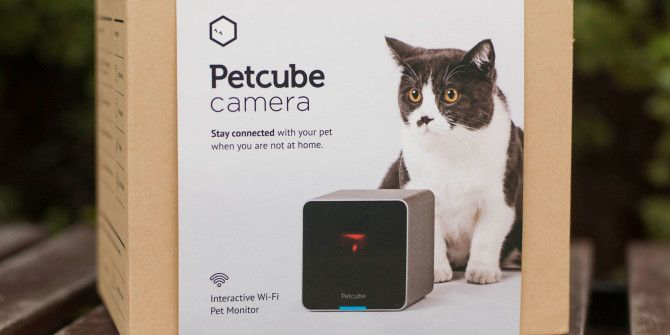 Watch and Play With Your Pets Remotely, with Petcube