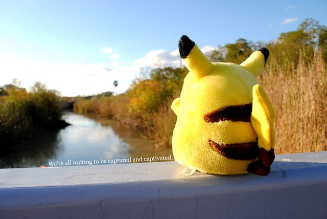 Pikachu Sitting on a Rail Looking Into Nature