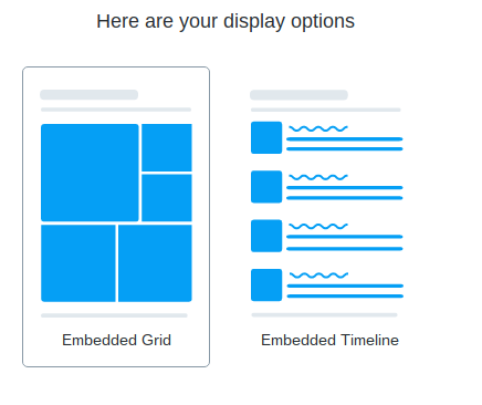 Twitter Embed Display Options