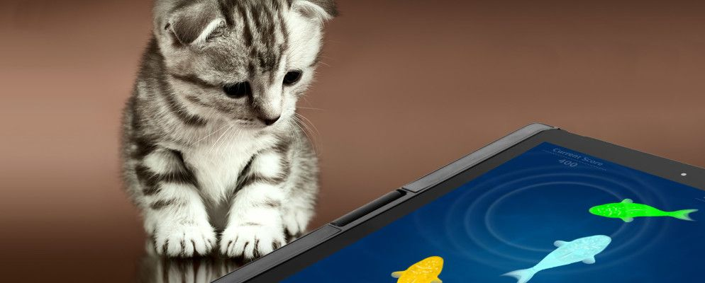 9 iPad and Android Tablet Apps Your Cat Will Love