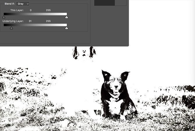 Photoshop Blend If Settings