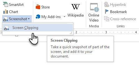Microsoft Word - Screen Clipping Tool