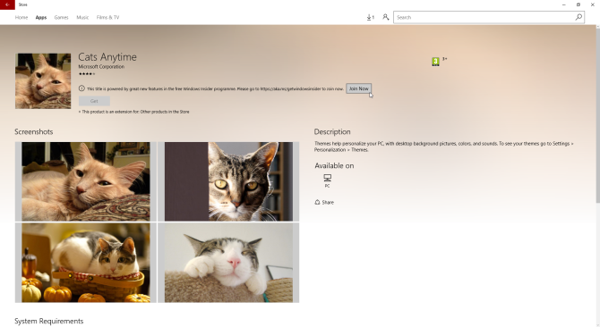 windows 10 theme cats everywhere