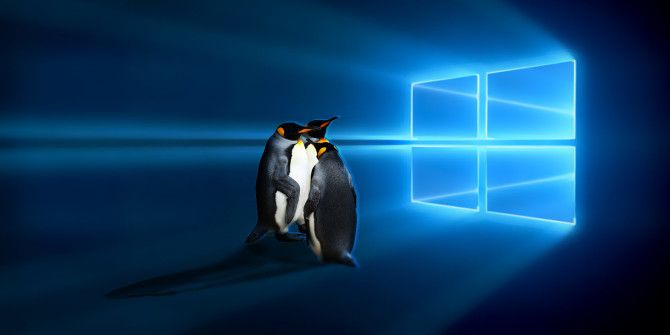 Top 5 Linux Operating Systems You Should Try in a Virtual Machine