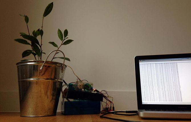 6 Ways a Raspberry Pi Can Help You Prepare for the Apocalypse monitoring chilli plant 670