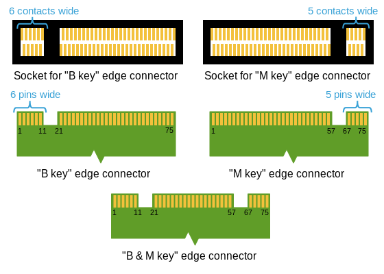m2 edge connector keying