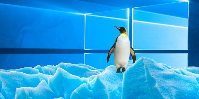Windows vs. Linux: Here's What They Have in Common