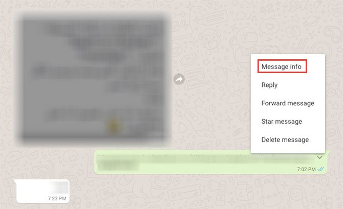 How to See the Exact Time Your WhatsApp Message Was Read WhatsApp1