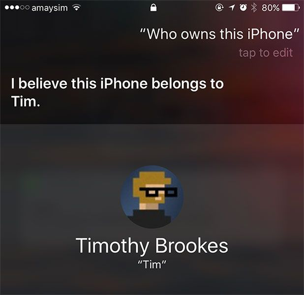 iPhone Siri Ownership