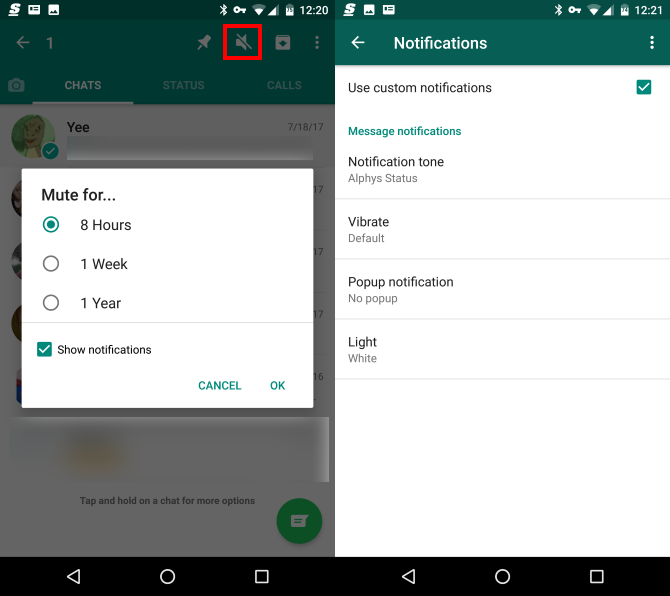 whatsapp mute notification options