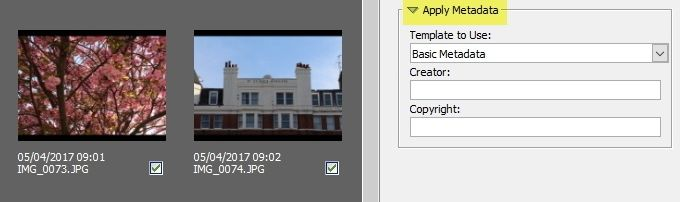 adobe bridge apply metadata