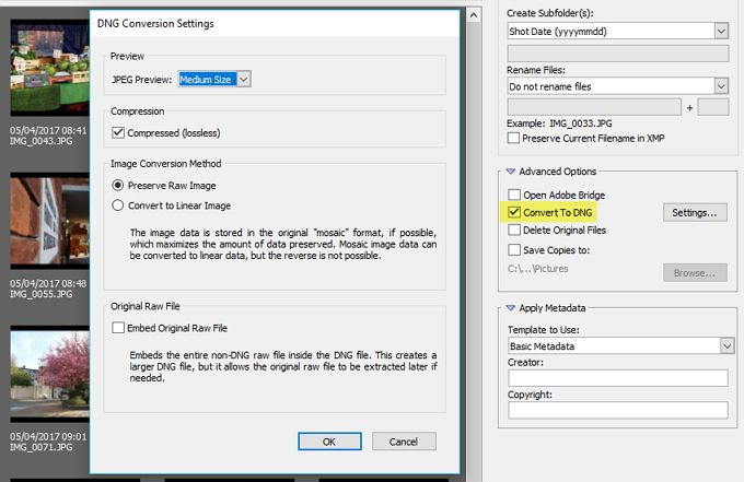 adobe bridge dng settings