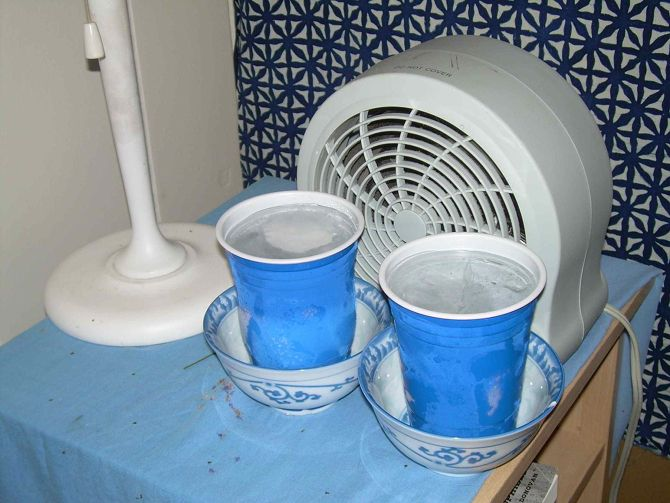 How to Keep Your House Cool Without an AC This Summer homemade swamp evaporative cooler