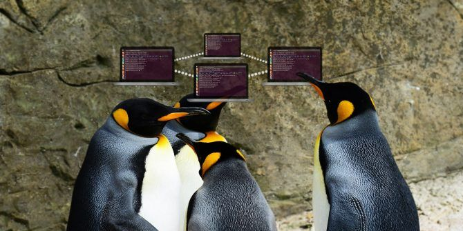 5 Networking Commands for the Linux Terminal