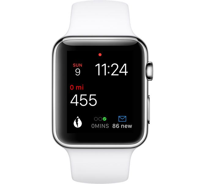 pedometer apple watch complication