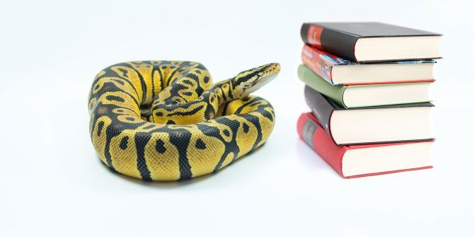 Python Dictionary: How You Can Use It To Write Better Code