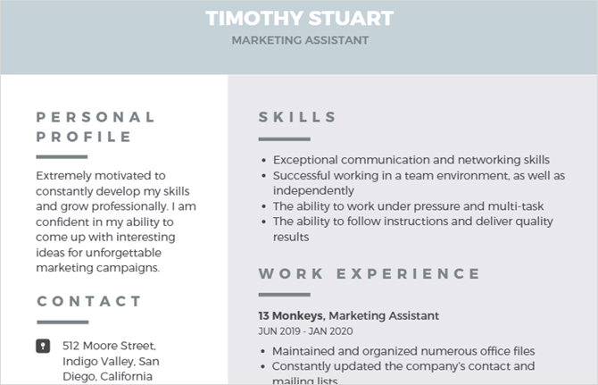 canva modern professional resume template