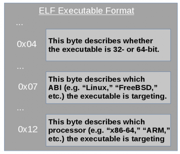 software os compatibility elf header